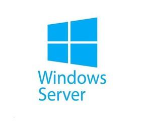 Windows Remote Desktop Svcs CAL 2019 OLP NL USER CAL